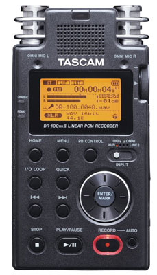 4. TASCAM DR-100mkII 2-Channel Portable Digital Recorder
