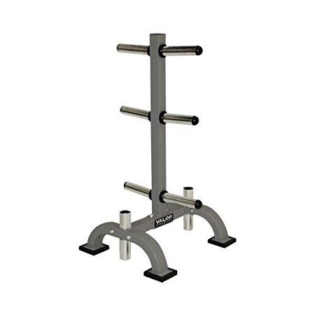 7. Valor Fitness BH-7 Olympic bar and plate rack