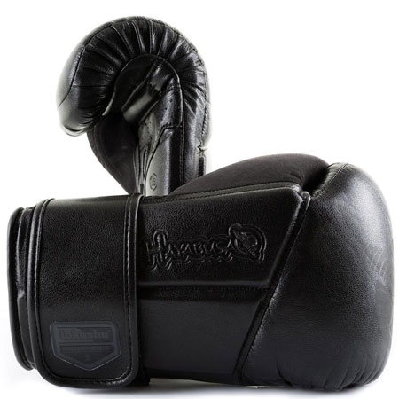 10. Hayabusa Fightwear Tokushu Regenesis 10oz Gloves