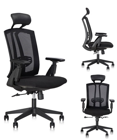 10. Dr. Office High Ergonomic Chair with Headrest and Adjustable Armrest