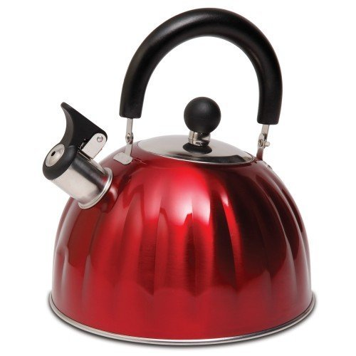6. Mr. Coffee Twining Pumpkin Shaped Stainless Steel Whistling Tea Kettle